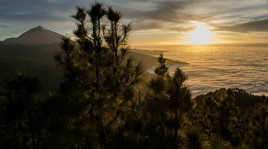 What to see in the Teide National Park